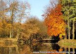 Postcard bridge in autumn