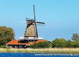 Postcard mill de Leeuw in Anna Paulowna