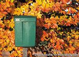 Postcard green mailbox
