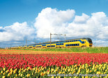 Postcard NS train with tulips