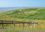 Postcard nature reserve het Oerd