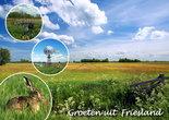Postcard Friesland 006