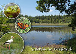 Postcard Friesland 001