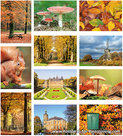 Autumn postcard set