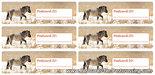 Postcrossing ID sticker Konikhorse