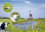 Postcard Greetings from Holland 001
