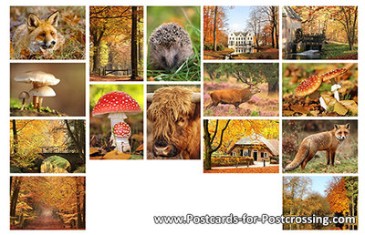 Postcard set Autumn