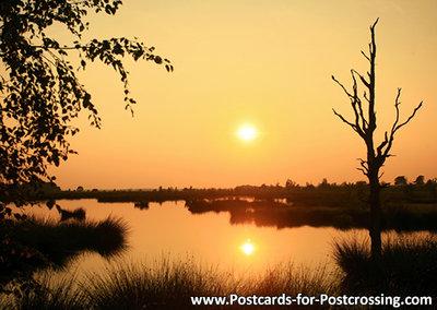 Sunset Dwingelderveld postcard