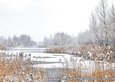 Postcard winter landscape
