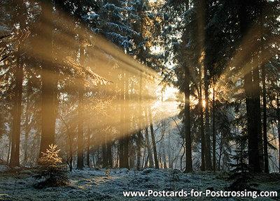 Postcard sunset Dwingelderveld