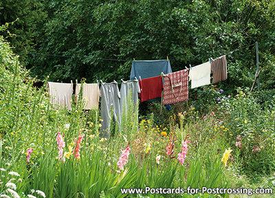 Postcard washing line