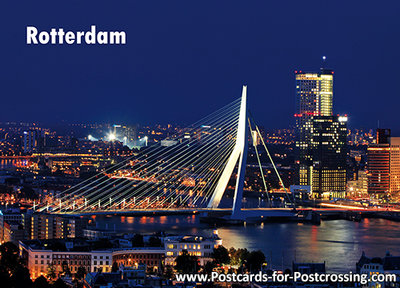 Rotterdam -  Erasmus bridge postcard