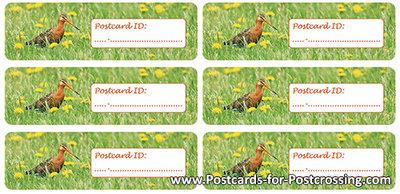 Postcrossing ID sticker godwit
