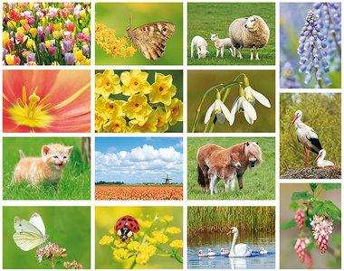 Spring postcard set