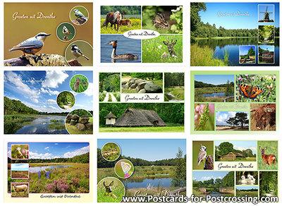 Postcard set 9 x Drenthe landscapes