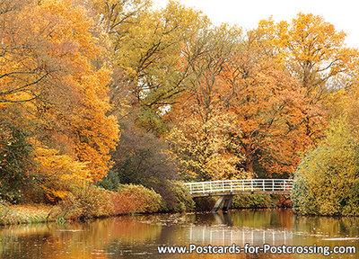 Autumn postcard  - bridge