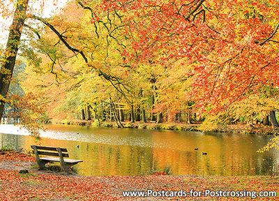 Bench in autumn postcard