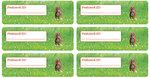 Postcard ID sticker eekhoorn