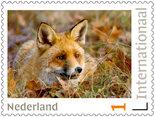 Postzegels voor postcrossing - vos