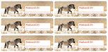 Postcard-ID-stickers-6x-Konik-horse