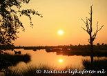 Ansichtkaart zonsondergang Dwingelderveld kaart, postcard sunset Dwingelderveld, Postkarte Sonnenuntergang Dwingelderveld