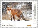 Postzegels 5 x Internationaal vos
