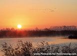 ansichtkaart zonsopkomst de Onlanden, postcardsunrise de Onlanden, Postkarte Sonnenaufgang de Onlanden
