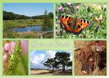 Ansichtkaart groeten uit Drenthe, Postcard greetings from Drenthe, Postkarte Grüße aus Drenthe