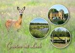 Postcard-Leek-001