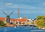 ansichtkaart Leiden Molen de Put, postcard Leiden, Postkarte Leiden
