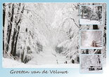 Ansichtkaart Veluwe in de winter, postcard Veluwe in winter, Postkarte Veluwe in winter