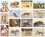 kaartenset Afrikaanse dieren