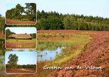 Postcard-Veluwe-010