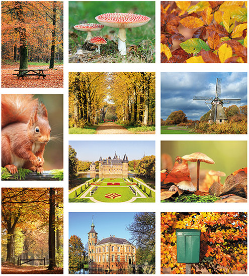Autumn postcardset
