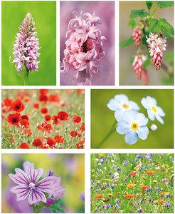 Flower postcardset