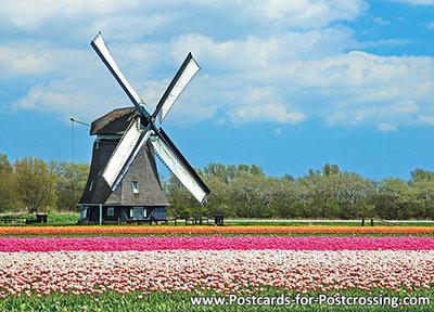 ansAnsichtkaart Poldermolen O-T, mill postcard, Mühle Postkarte
