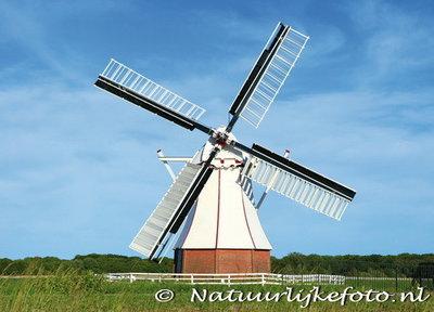 The White mill - Glimmen (0123)