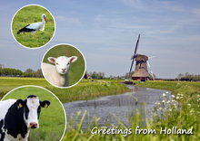 ansichtkaart / postcard Greetings from Holland