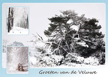 Ansichtkaart winter op de Veluwe, postcard winter on the Veluwe, Postkarte winter auf der Veluwe
